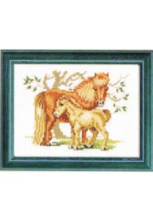 """Kit au point de croix 13x17cm """"le cheval et le poulain"""", Aïda, au point compté."""