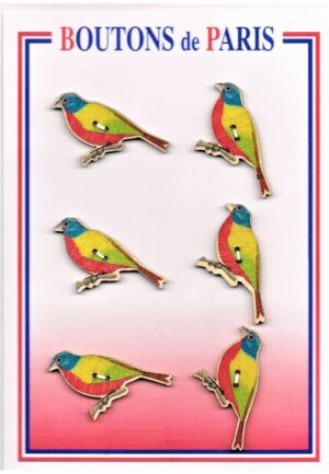 Bouton les oiseaux 40mm (6pcs), bouton 2-trous, boutons décoratifs, les oiseaux multi couleur, jaune,rouge,marron,turquoise